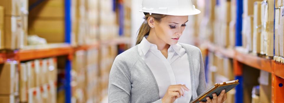 Staff-checking-Inventory-SL